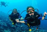 Can you enjoy underwater activities in Goa?