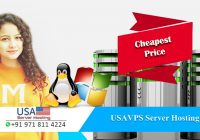 USA VPS Hosting the Most Preferred Hosting Solution – USA Server Hosting