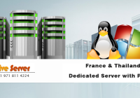 What Importance of France & Thailand Dedicated Server with Profits?