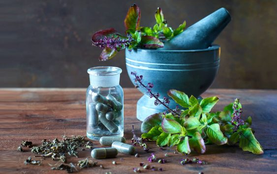 What are the basic requirements to establish a ayurvedic company